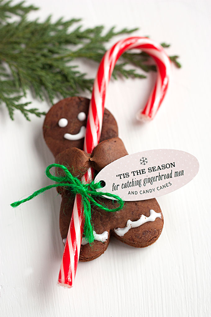 Recipe: Chocolate Gingerbread Men with Candy Canes